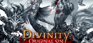 Divinity: Original Sin Review (Single Player)